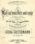 Goltermann Wach cover.jpg