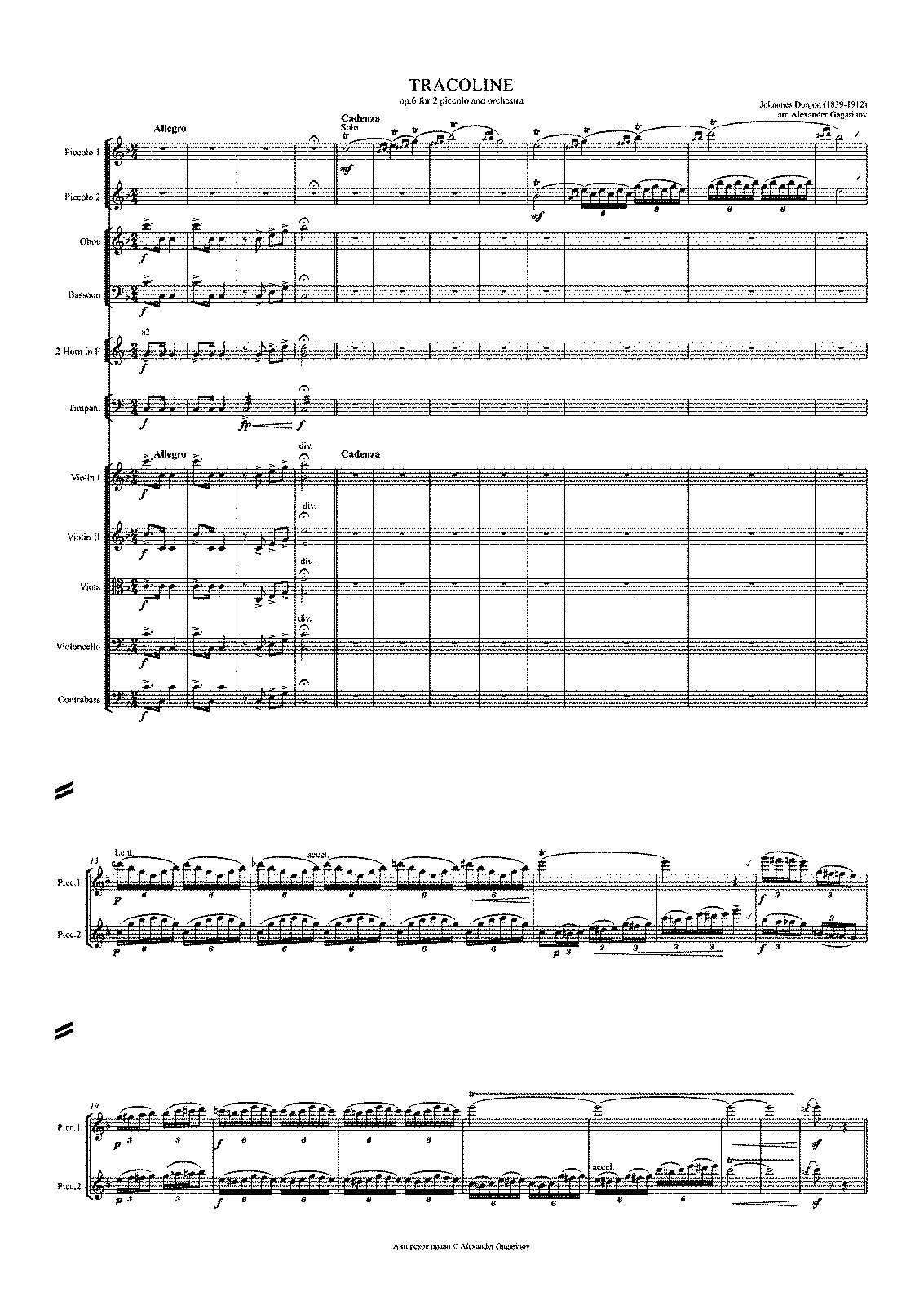 PMLP465397-TRACOLINE op 6 for 2 piccolo and orchestra 6.pdf