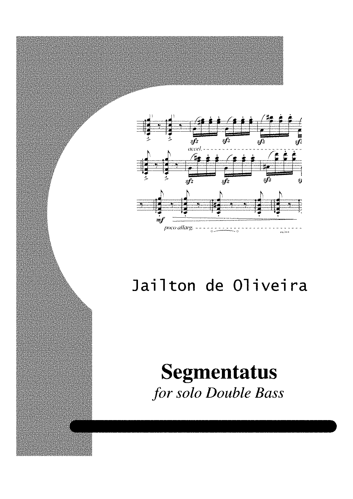 PMLP421357-segmentatus for double bass.pdf