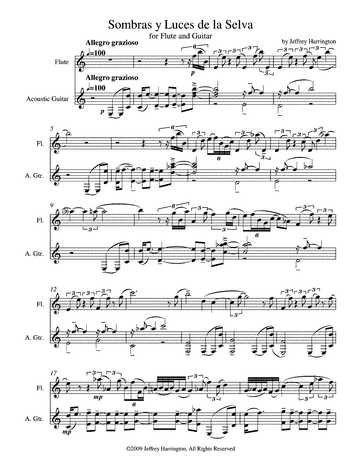 PMLP194345-sombras y luces de la selva for flute and guitar score.pdf