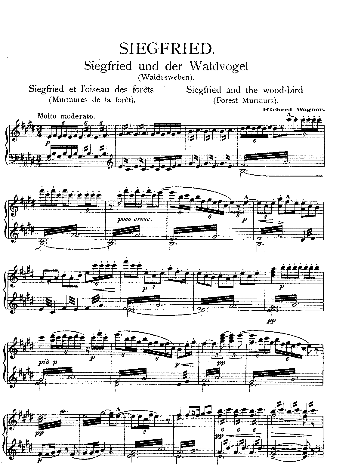 Wagner Siegfried and the Wood Birds.pdf